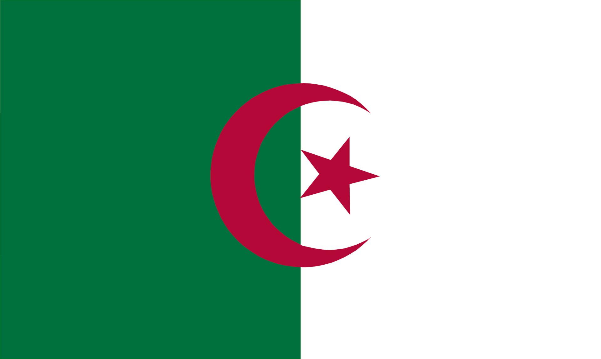 Afghanistan Flag Heart